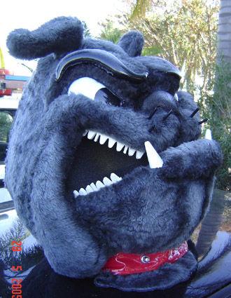 Bulldogsu0027 Mascot Headpiece. Camel Costume & Costume Hire Mascots Costumes Dress Up Costumes | Character ...